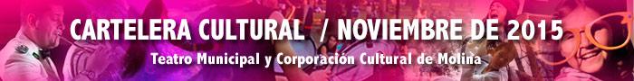 banner-cartelera-cultural-noviembre-2015