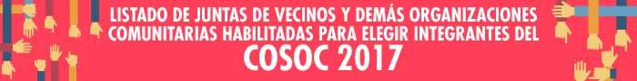 banner-cosoc-2017