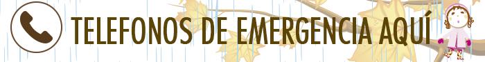 banner-emergencia-invierno-2016