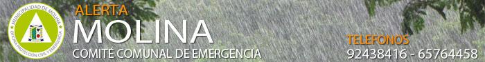 banner-emergencia-logo