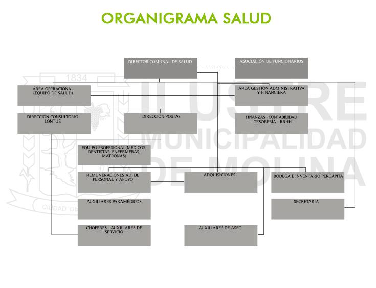 organigrama-salud-