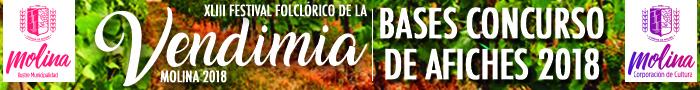 Banner-concurso-afiches-festival-vendimia-2018